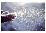 winter__s_blowball_by_ansmeer